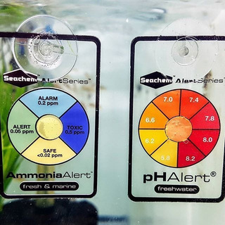 Combo Seachem Medidores Test Continuos Ph + Amoniaco Polypte