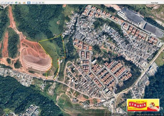 Terreno Para Alugar, 20000 M² Por R$ 15.000/mês - Conjunto Habitacional Santa Etelvina Ii - São Paulo/sp - Te0057