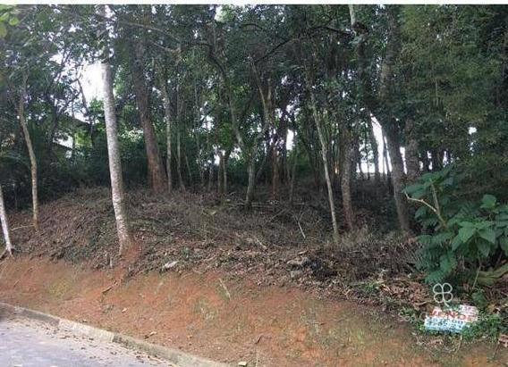 Terreno À Venda, 500 M² Por R$ 250.000 - Granja 2 Gleba 1 E 2 - Granja Viana - Cotia/sp - Te0344