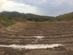 Terreno Agricola, Ocasión , Oferta , Zona Arrocera
