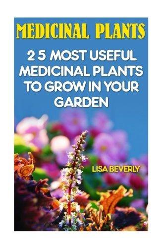 Plantas Medicinales 25 Plantas Medicinales Más Útiles Para
