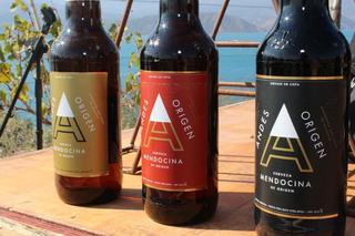 Cerveza Andes Origen, Ipa - Roja - Negra, Litro Retornable