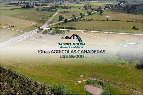 En Venta. 10 Ha Agrícolas - Ganadera.ubicación Estratégica.