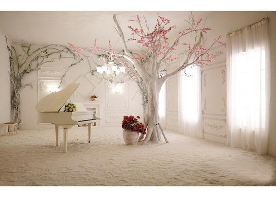 Natal Decoração Moda Interior Cenário Fotografia Foto Imagem