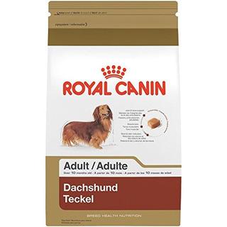 Royal Canin Rre Health Nutrition Dachshund Adult Comida Para