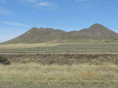 Campos En Sierra De La Ventana Y Tornquist