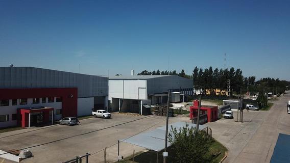 Depósito 10.000m2 - Parque Industrial Pilar