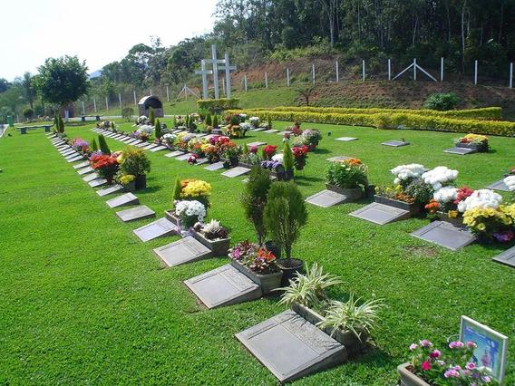 Lote Cemitério Jardim Da Saudade