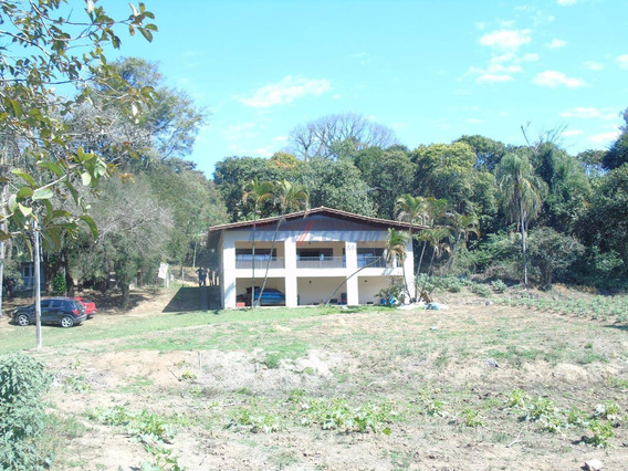 Sítio À Venda Em Vila Matias - Si273621