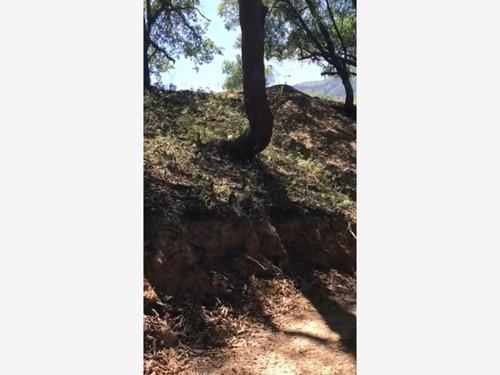 Imagen 1 de 3 de Terreno En Venta En Campestre El Barro