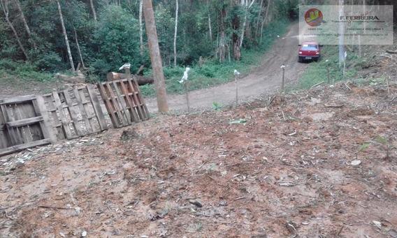 Terreno Residencial À Venda, Jardim Das Palmeiras, Juquitiba. - Te0068