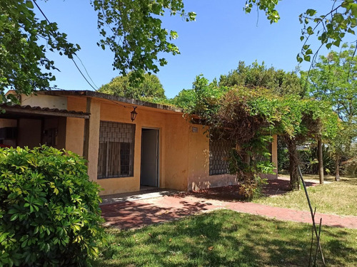 Casa 3 Dormitorios, 1 Baño, A 2 De Rbla, Barra Carrasco
