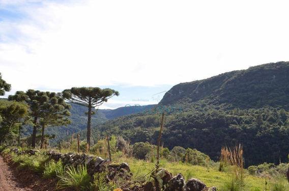 Sítio À Venda, 30000 M² Por R$ 334.000,00 - Morro Redondo - Gramado/rs - Si0044