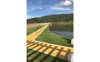 Fazenda 600 Alqueires Em Minaçu Go