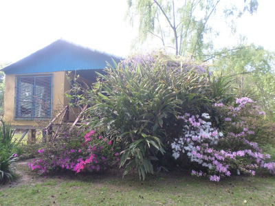 Casa En Isla De Tigre Y Lancha Crucero - Muy Buen Precio