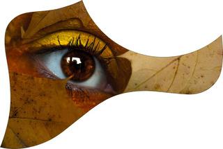 Escudo Palheteira Resinada Violão Aço Estilo Nature Eye