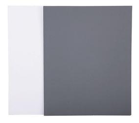 Cartão Cinza 2 Em 1 Balanço De Branco Jjc Gc-1