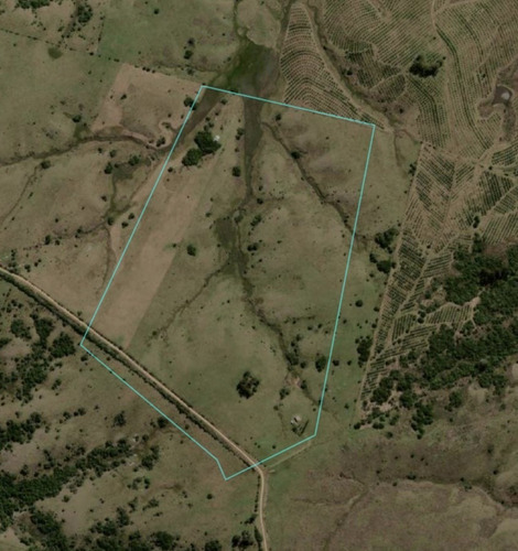 Campo De 41 Has A Menos De 9 Km De Pueblo Eden - Consulte !!!!- Ref: 4111