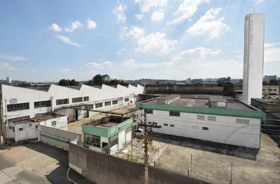 Comercial Para Aluguel, 0 Dormitórios, Socorro - São Paulo - 6159