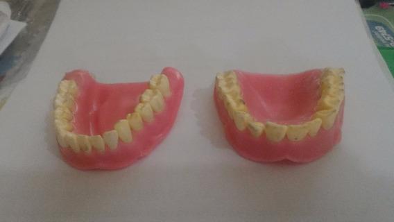 Gengiva Para Manequim Odontologico Ortodontico Inodon Rgo