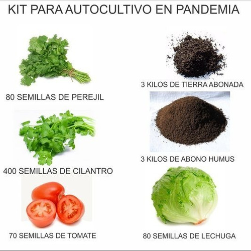 Kit Auto Cultivó De Hortalizas En Casa