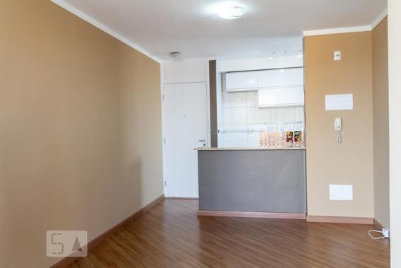 Apartamento Para Aluguel - Bom Retiro, 3 Quartos, 62 - 893043171