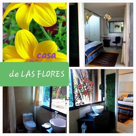 Estudio En Renta Avenida Las Flores, Flor De María