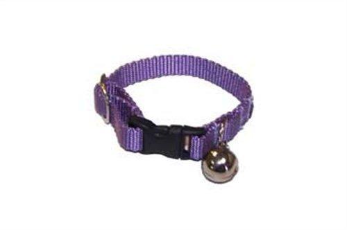 Petland 766501000887 Collar/arnés Para Hurón Marshall, Color