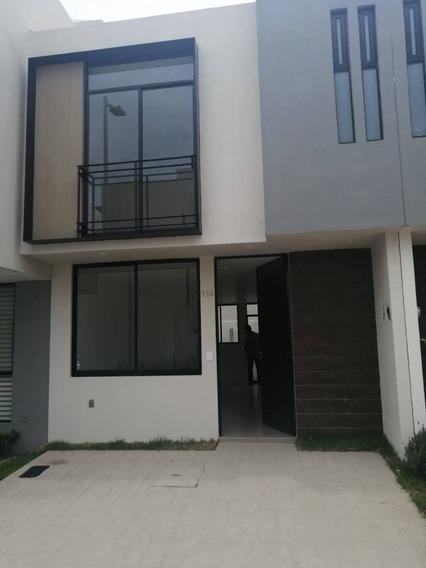 Casa En Renta Camino A La Coladera, Cortijo San Agustin
