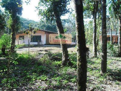Sítio Com 3 Dorms, Feital, Ibiúna - R$ 275 Mil, Cod: 53907520 - V53907520