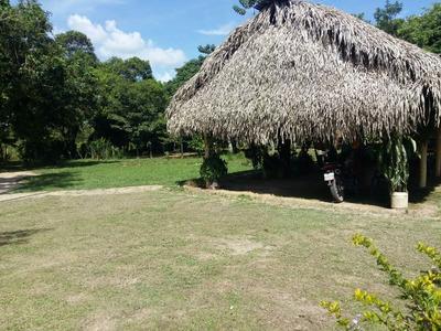 Finca En Arauca Sector La Antioqueña Km 19