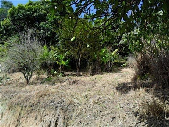 Chácara Para Comprar Sitio Do Morro Santana De Parnaíba - 210