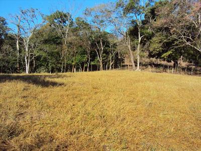 Finca Ganadera En Jicaral De Puntarenas
