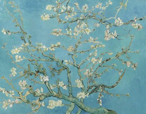 Lienzo Tela Canvas Almendro En Flor Vincent Van Gogh 1890