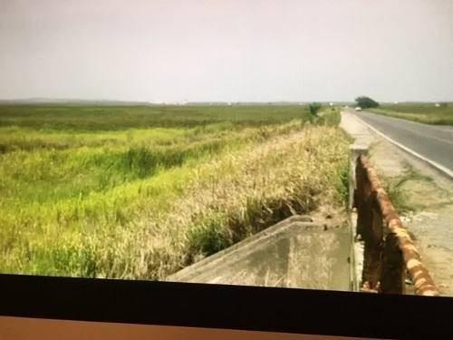 Terreno A Pie De Carretera En Las Pampas Veracruz