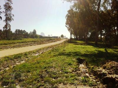 Terrenos Baratos Y Financiados