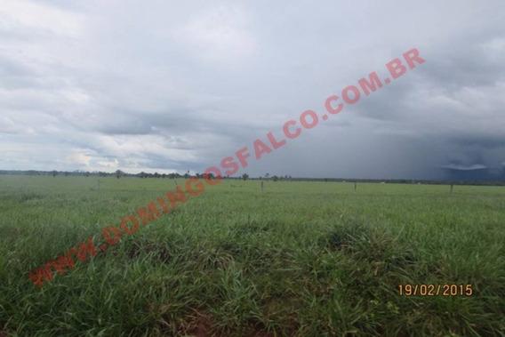 Venda - Fazenda - Zona Rural - Pontes E Lacerda - Mt - D4501