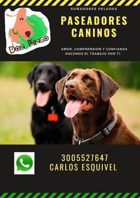 Paseadores Caninos