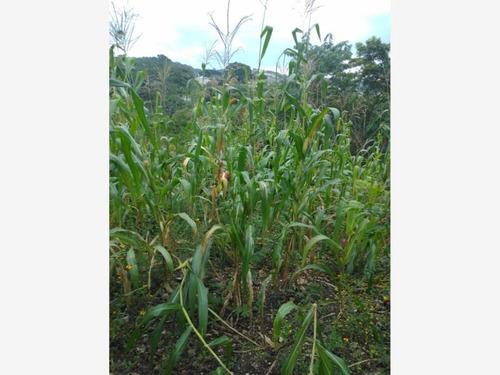 Imagen 1 de 3 de Terreno En Venta Villahermosa