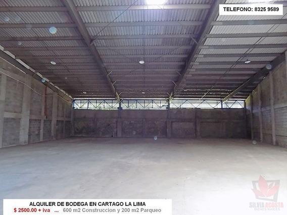 Alquiler De Bodega En Cartago- Lima Por Lab.stein- A 50 Mts
