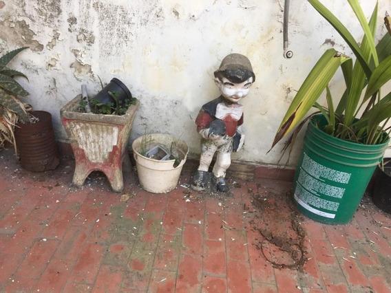 Enano Y Duende De Jardin