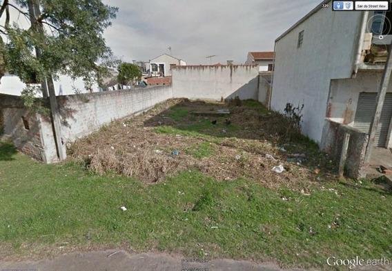 Terreno Para Venda Em São José Dos Pinhais, Rio Pequeno - 372007000_2-588118