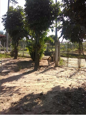 Chácara Residencial À Venda, Bairro Dos Pires, Limeira. - Codigo: Ch0085 - Ch0085