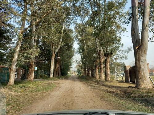 Imagen 1 de 8 de Terreno Con Escritura De 12 X 35. Ruta 3 Km 45
