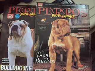 Revistas De Perros