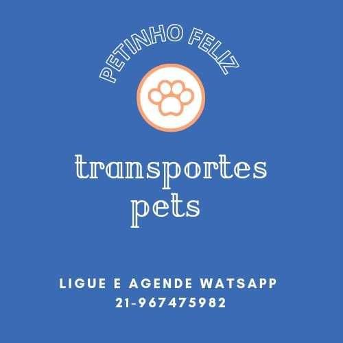 Imagem 1 de 5 de Transporte  Para Pets