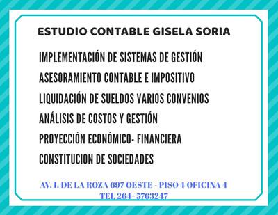 Contadora Publica - Consultora