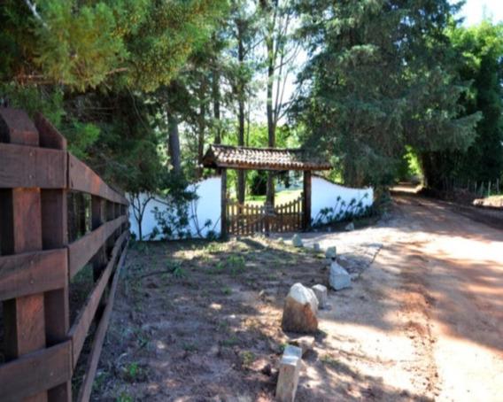 Fazendo Em Cunha - Sp - 204200780 - 32009188