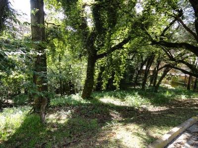 Terreno Em Vila Capivari, Campos Do Jordão/sp De 2400m² À Venda Por R$ 900.000,00 - Te97696