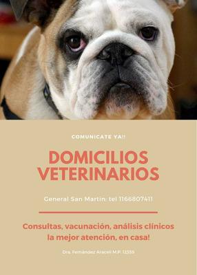 Veterinaria A Domicilio San Martín.